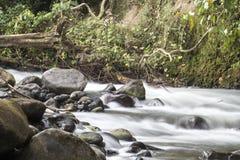 Река с утесами стоковая фотография rf