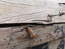 Ржавые ногти на старом фото запаса доск стоковое фото rf