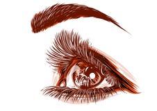 Рисовать красного глаза женщины иллюстрация штока