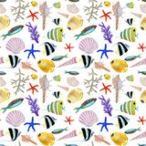 Рука нарисованная в элементе мира моря акварели естественном Картина рыб кораллового рифа seemless на белой предпосылке иллюстрация штока