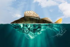 Рыбы стиля Steampunk окунь стоковое фото rf
