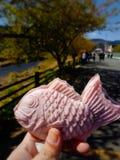 Рыбы сформированные с пинком Сакуры, японские помадки Taiyaki в руке на идя улицах стоковое фото