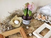 Розовые гиацинты в цветочном горшке, яйцах и яйцах триперсток, рамках, сене на светлом деревянном столе, весеннем сезоне, пасхе стоковая фотография rf
