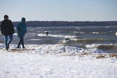 Россия, Gulf of Finland Зима занимаясь серфингом в выходные дни стоковые фото