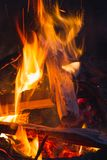 Ñ与木柴的 ampfire在森林,Ñ灼烧的火 loseup里与火花的 免版税库存照片