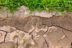  Ñ положило землю и траву на полку на поле лета Стоковая Фотография RF