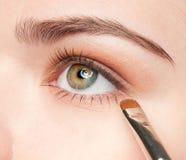 цoman applying cosmetic shadow brush Stock Photos
