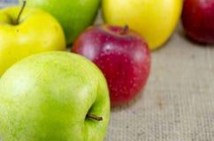Żółci czerwoni i zieleni jabłka Obrazy Stock