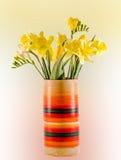 Żółci daffodils i frezja kwiaty w żywej barwionej wazie, zamykają up, odizolowywający, gradientowy tło, Zdjęcie Stock