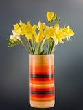 Żółci daffodils i frezja kwiaty w żywej barwionej wazie, zamykają up, odizolowywający, gradientowy tło, Obraz Royalty Free