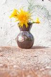 Żółci dzicy kwiaty w brown małej glinianej wazie na białej ścianie folwarczki zdjęcie stock