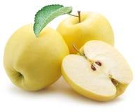 Żółci jabłka zdjęcia stock
