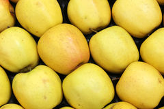 Żółci jabłka zdjęcia royalty free