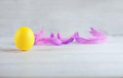 Żółci jajka i piórka Fotografia Royalty Free