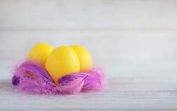 Żółci jajka w gniazdeczku Zdjęcie Royalty Free