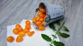 Żółci pomidory Fotografia Royalty Free