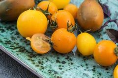 Żółci pomidory Zdjęcia Royalty Free