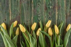 Żółci tulipany na zielonym drewnianym tle, szczęśliwy Easter czas Obraz Stock