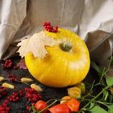 Żółta bania z liśćmi, kwiatami i jagodami jesieni, Fotografia Stock
