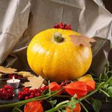 Żółta bania z liśćmi, kwiatami i jagodami jesieni, Obrazy Stock