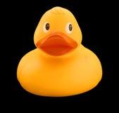 Żółta gumowa kaczka zdjęcie royalty free