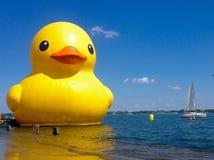 Żółta kaczka Fotografia Royalty Free