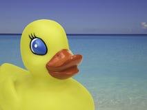 Żółta kaczka na wakacje Obraz Stock