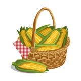 Żółta kukurudza w koszu, odizolowywającym na bielu również zwrócić corel ilustracji wektora Zdjęcie Royalty Free