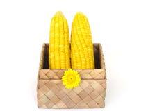 Żółta kukurudza w pudełku wyplata Zdjęcie Stock