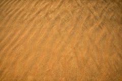 Żółta piasek powierzchnia pustynia Wiatr zamiata piasek, Fotografia Royalty Free
