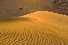 Żółta piaskowata falista diuny tekstura Obrazy Stock