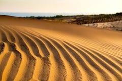 Żółta piaskowata falista diuny tekstura Zdjęcia Royalty Free
