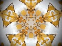Żółta roślina w śnieżny mandala Zdjęcie Stock