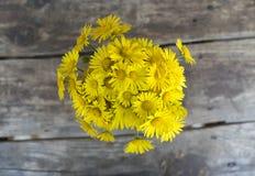 Żółta stokrotka kwitnie w wazie na drewnianym stole Wysoki kąt Zdjęcia Stock
