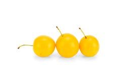 Żółte śliwki Fotografia Royalty Free