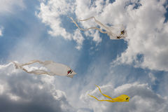 Żółte i białe duch kanie w błękitnym lata niebie Zdjęcie Royalty Free