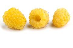 Żółte malinki fotografia stock