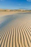 Żółte miękkie piasek diuny Zdjęcia Royalty Free