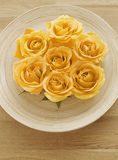 Żółte róże na talerzu Zdjęcie Royalty Free