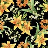 Żółtej leluja kwiatu akwareli ciemny seameless wzór Obrazy Stock