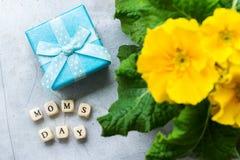 Żółtej wiosny primula kwiatu prezenta pierwiosnkowy pudełko dla macierzystego dnia Obraz Royalty Free