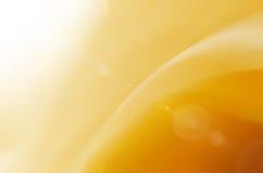 Żółty abstrakta i światła słonecznego backgroud royalty ilustracja