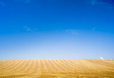 Żółty błękitny horyzont Zdjęcie Royalty Free