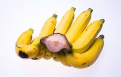Żółty banana bielu tło Zdjęcie Royalty Free