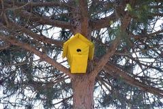 Żółty birdhouse obwieszenie od drzewa Obraz Stock