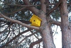 Żółty birdhouse obwieszenie od drzewa Zdjęcia Stock