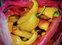 Żółty chili Zdjęcia Stock