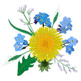 Żółty dandelion kwiatu bukiet Ręka rysujący wildflowers żółty błękitny bukiet Ilustracji