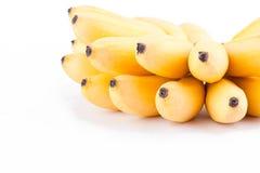 Żółty jajeczny banan lub ręka dojrzali złoci banany na białego tła Pisang Mas zdrowym Bananowym owocowym jedzeniu odizolowywający Obraz Stock