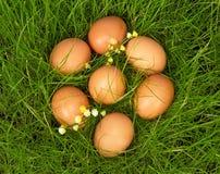 Żółty jajka kłamstwo na zielonej trawie Zdjęcia Royalty Free